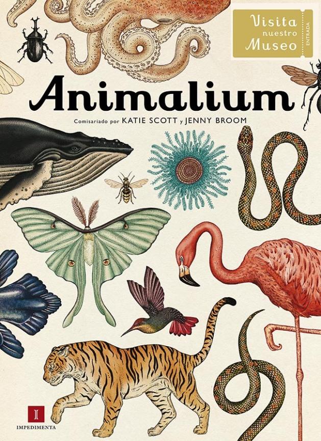 animalium1